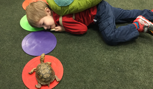 a boy on the ground, face to face with a turtle