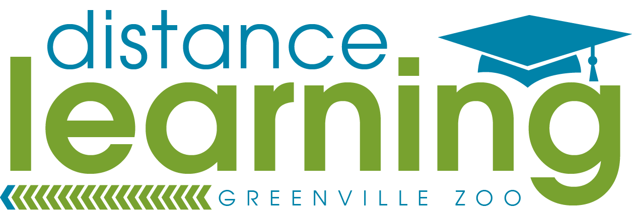 Distance Learning at Greenville Zoo