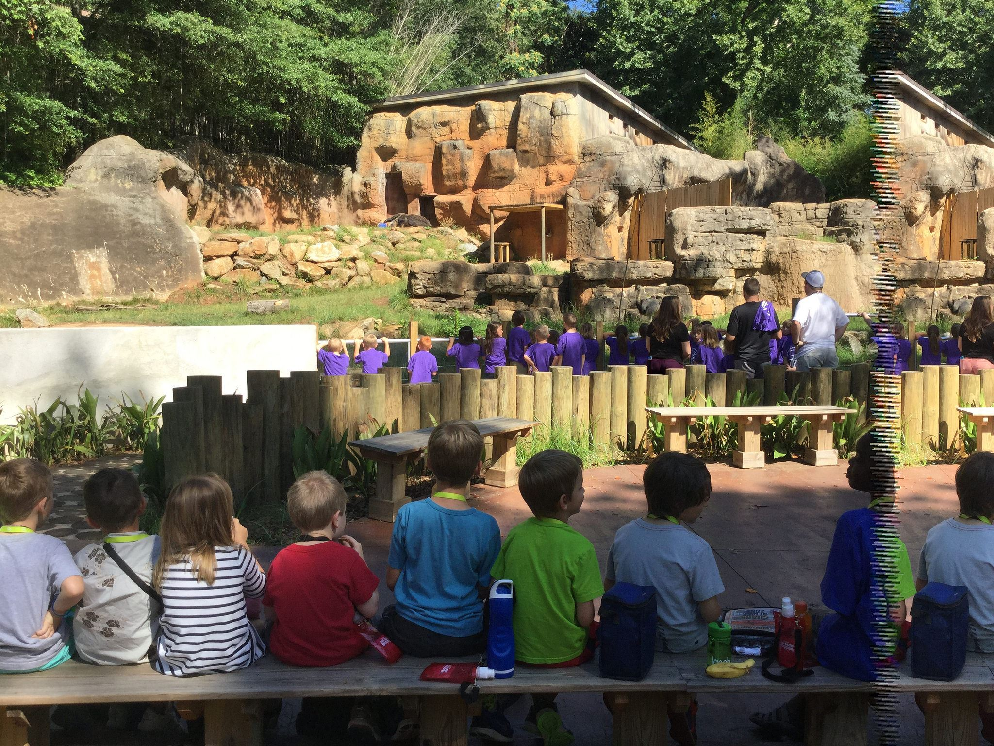 Children sitting on a bench at the zoo eating lunch, while another group of kids look at an exhibit